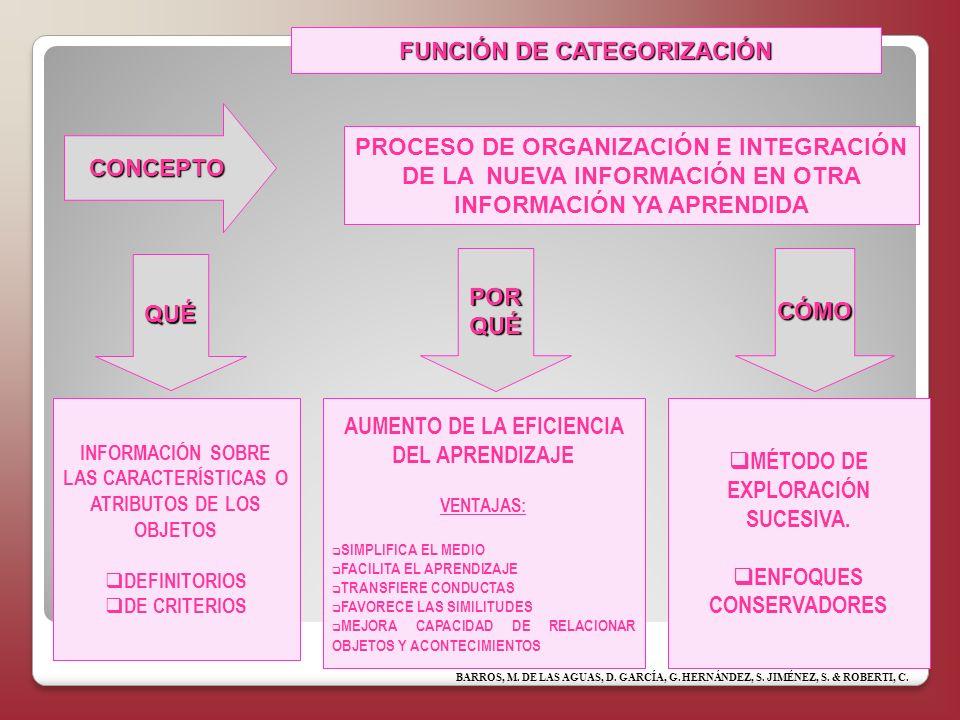 FUNCIÓN DE CATEGORIZACIÓN
