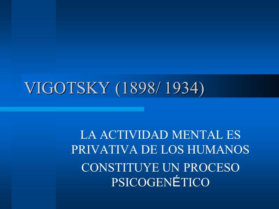 VIGOTSKY (1898/ 1934) LA ACTIVIDAD MENTAL ES PRIVATIVA DE LOS HUMANOS