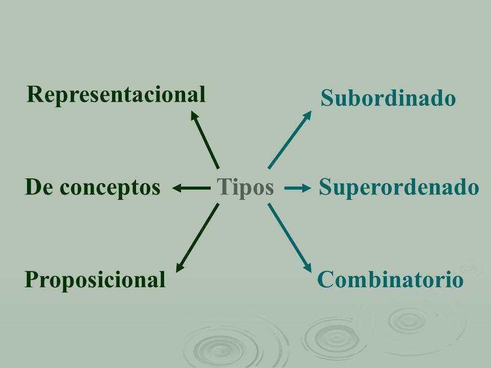 Representacional Subordinado De conceptos Tipos Superordenado Proposicional Combinatorio