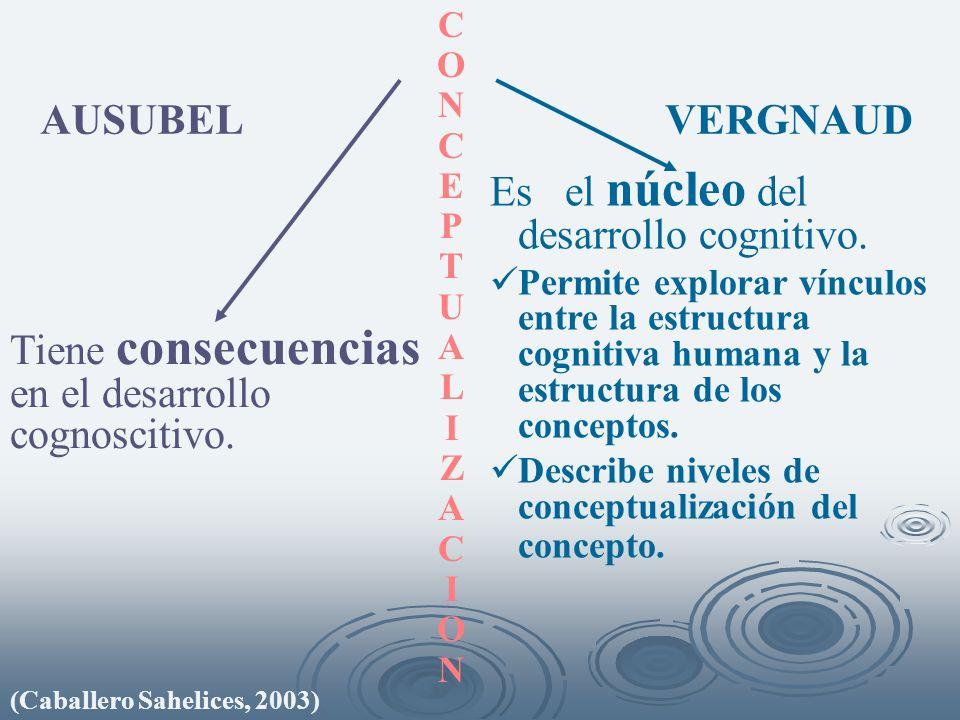 Es el núcleo del desarrollo cognitivo.