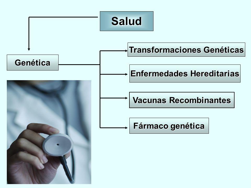 Salud Transformaciones Genéticas Genética Enfermedades Hereditarias