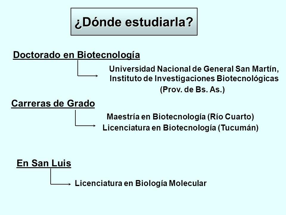 ¿Dónde estudiarla Doctorado en Biotecnología