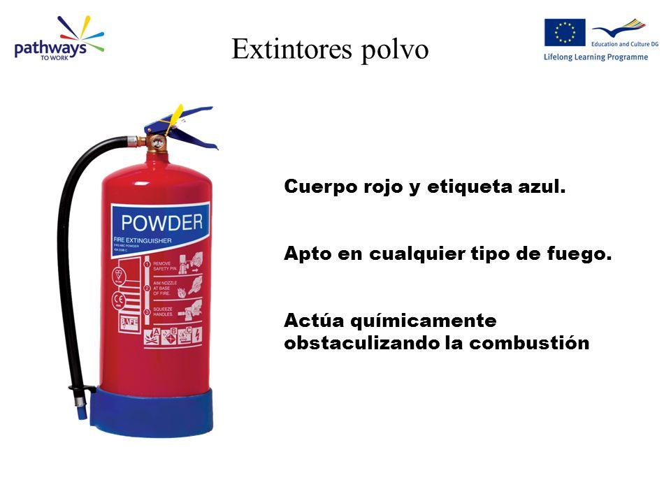 Extintores polvo Cuerpo rojo y etiqueta azul.