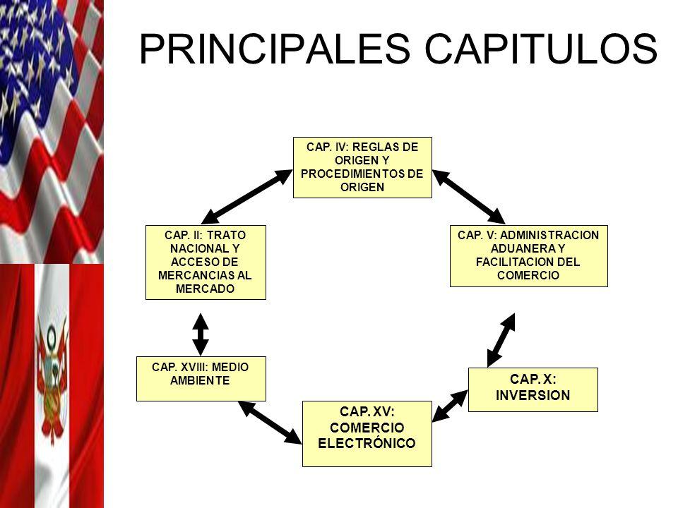 PRINCIPALES CAPITULOS