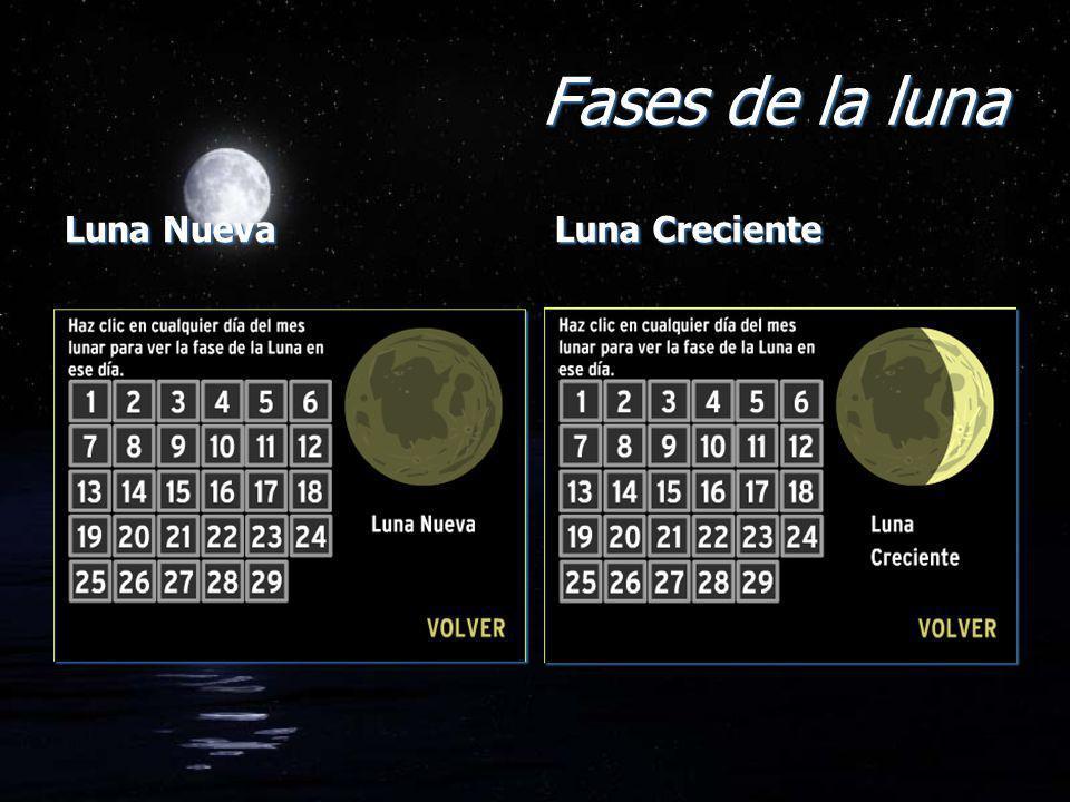 Fases de la luna Luna Nueva Luna Creciente
