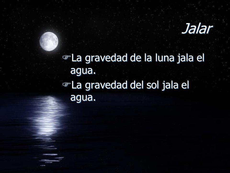 Jalar La gravedad de la luna jala el agua.