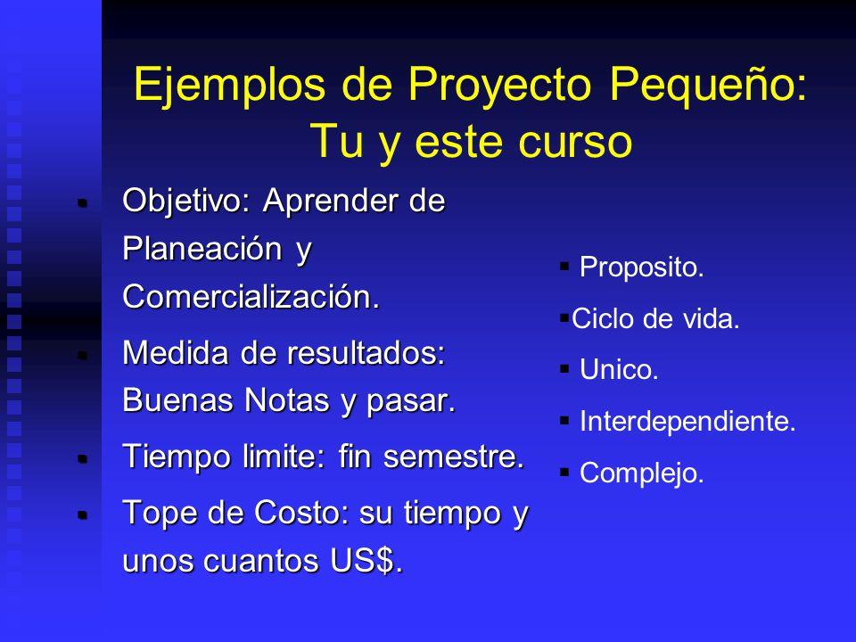 Ejemplos de Proyecto Pequeño: Tu y este curso