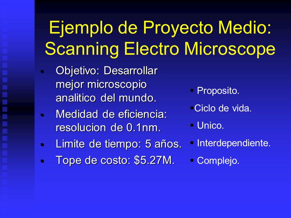Ejemplo de Proyecto Medio: Scanning Electro Microscope