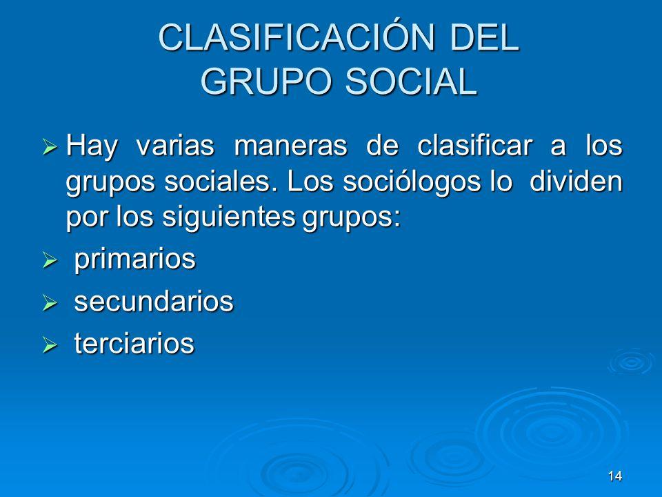 CLASIFICACIÓN DEL GRUPO SOCIAL