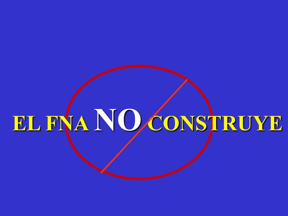 EL FNA NO CONSTRUYE