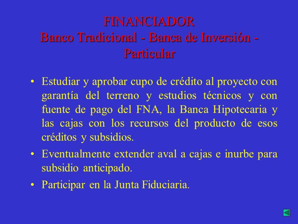 FINANCIADOR Banco Tradicional - Banca de Inversión - Particular
