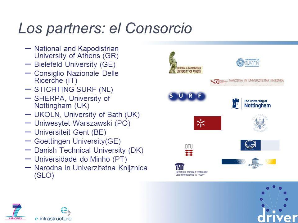 Los partners: el Consorcio