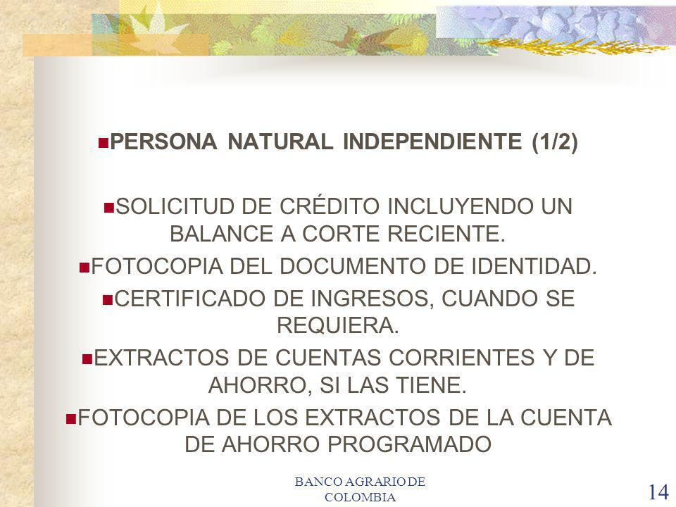 PERSONA NATURAL INDEPENDIENTE (1/2)