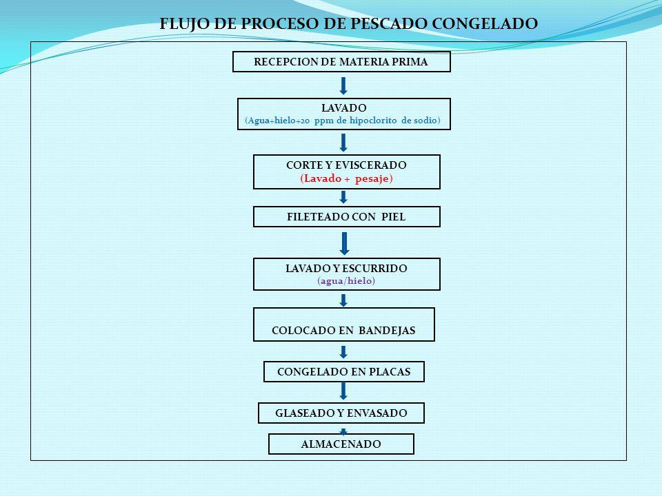 FLUJO DE PROCESO DE PESCADO CONGELADO RECEPCION DE MATERIA PRIMA