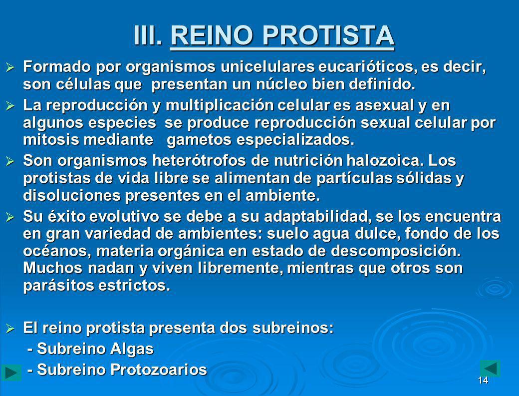 III. REINO PROTISTA Formado por organismos unicelulares eucarióticos, es decir, son células que presentan un núcleo bien definido.
