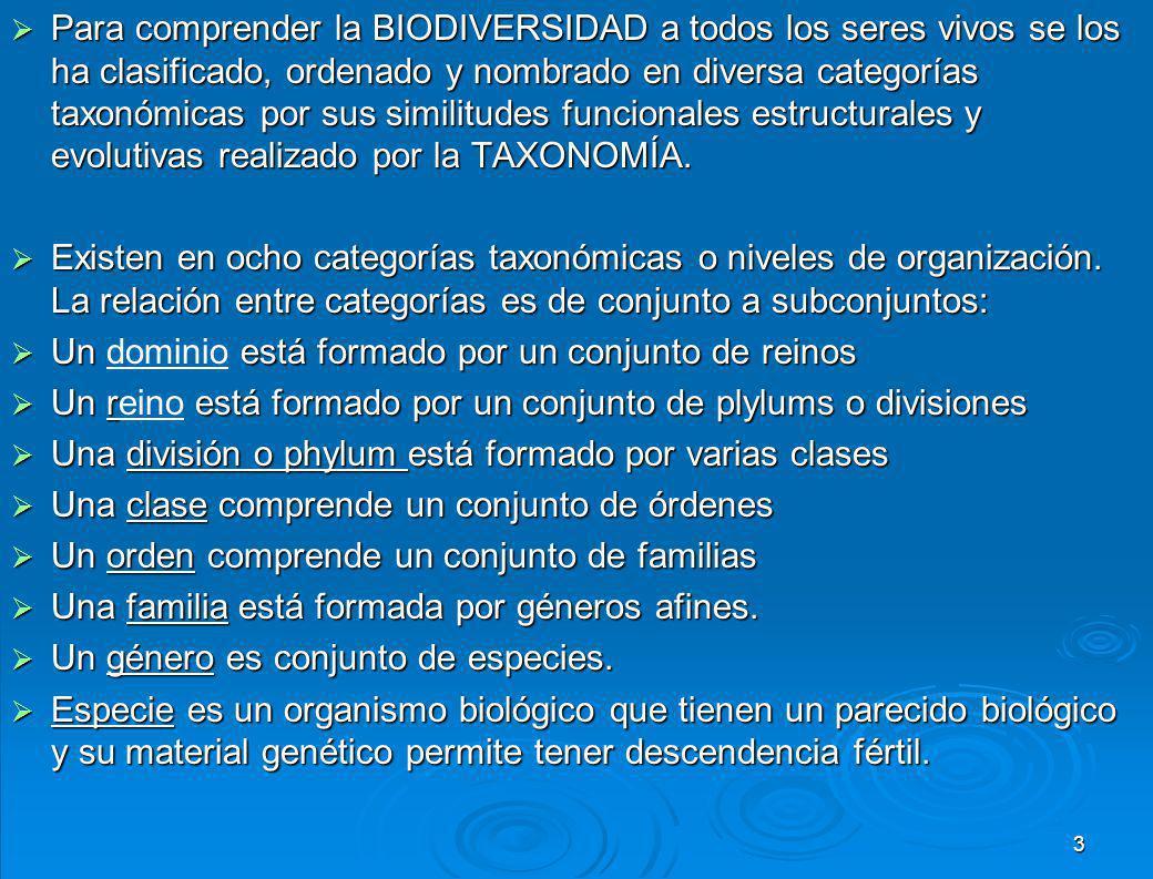 Para comprender la BIODIVERSIDAD a todos los seres vivos se los ha clasificado, ordenado y nombrado en diversa categorías taxonómicas por sus similitudes funcionales estructurales y evolutivas realizado por la TAXONOMÍA.