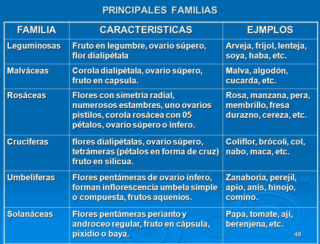 PRINCIPALES FAMILIAS FAMILIA CARACTERISTICAS EJMPLOS