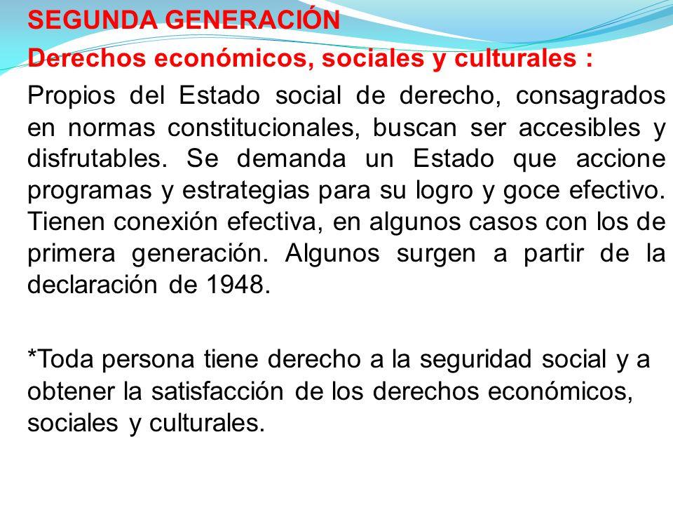 Derechos económicos, sociales y culturales :