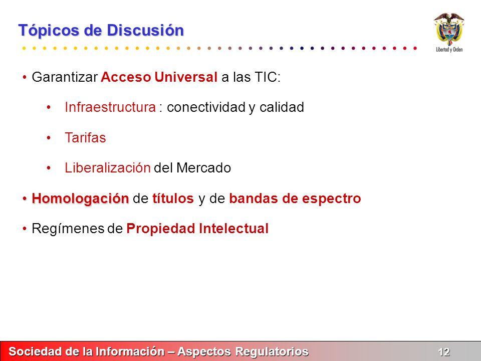 Tópicos de Discusión Garantizar Acceso Universal a las TIC: