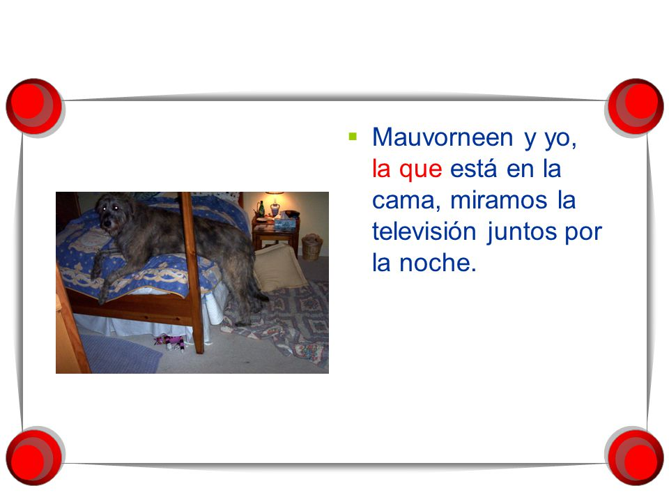 Mauvorneen y yo, la que está en la cama, miramos la televisión juntos por la noche.