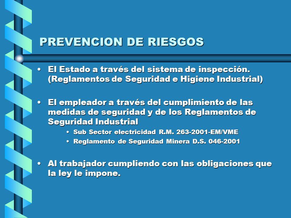 PREVENCION DE RIESGOS El Estado a través del sistema de inspección. (Reglamentos de Seguridad e Higiene Industrial)