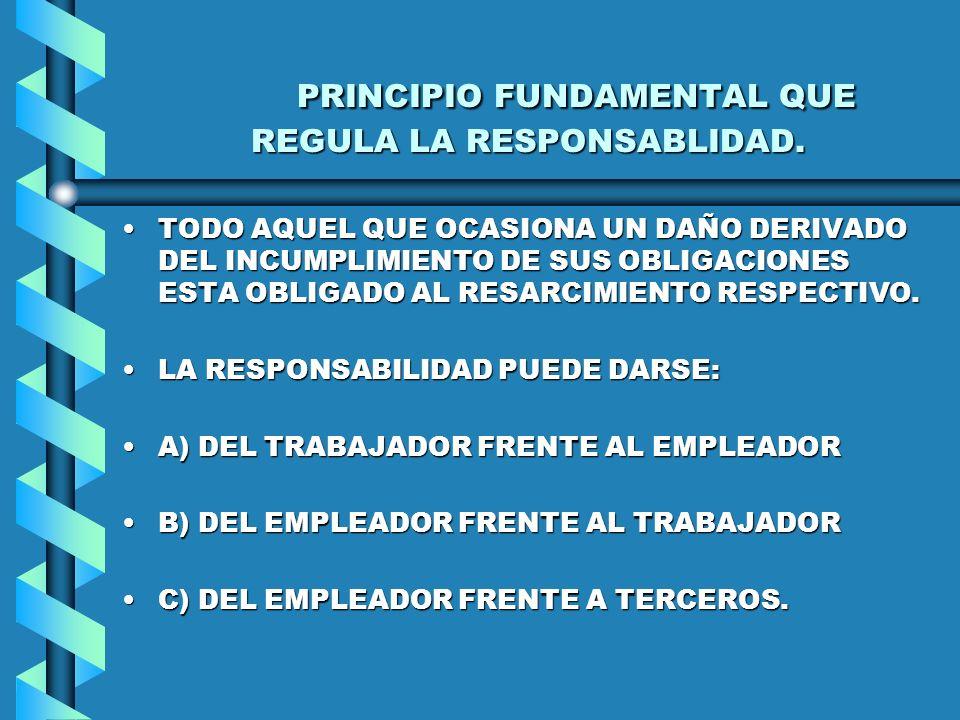 PRINCIPIO FUNDAMENTAL QUE REGULA LA RESPONSABLIDAD.