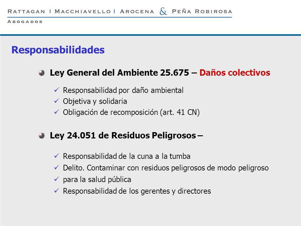 Responsabilidades Ley General del Ambiente 25.675 – Daños colectivos