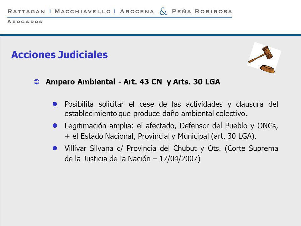 Acciones Judiciales Amparo Ambiental - Art. 43 CN y Arts. 30 LGA