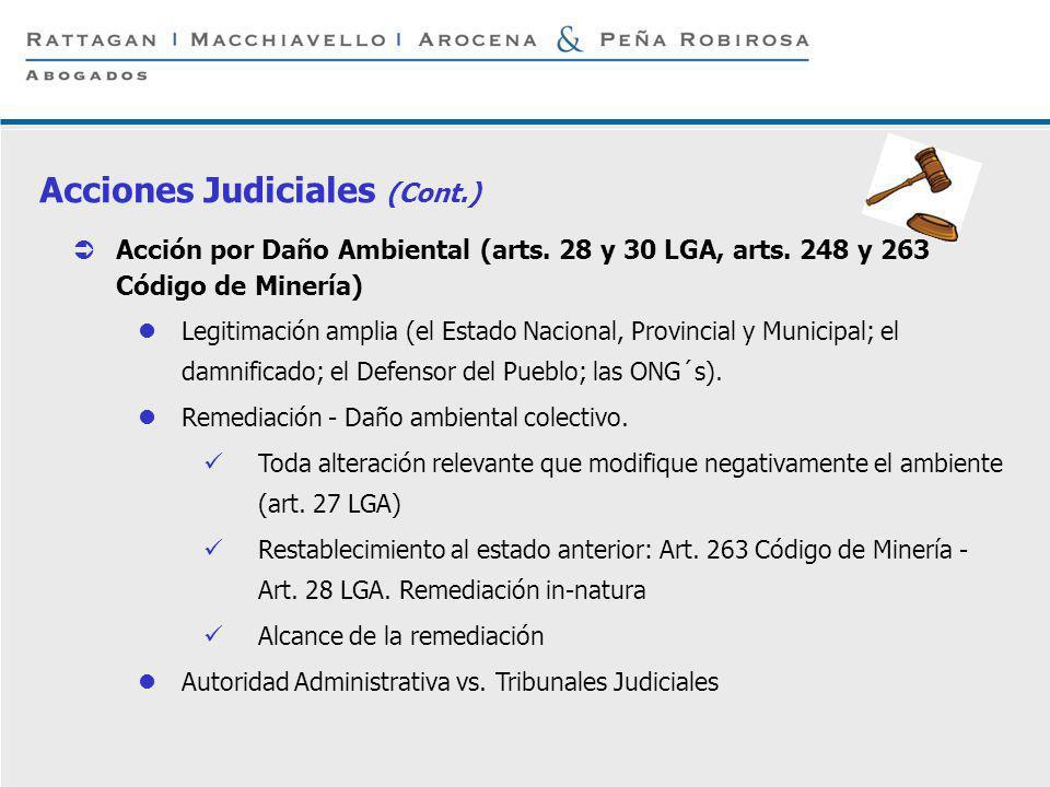 Acciones Judiciales (Cont.)