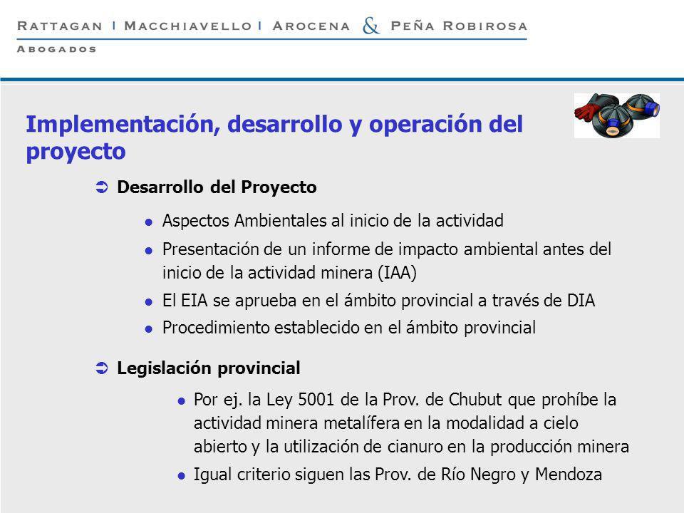 Implementación, desarrollo y operación del proyecto