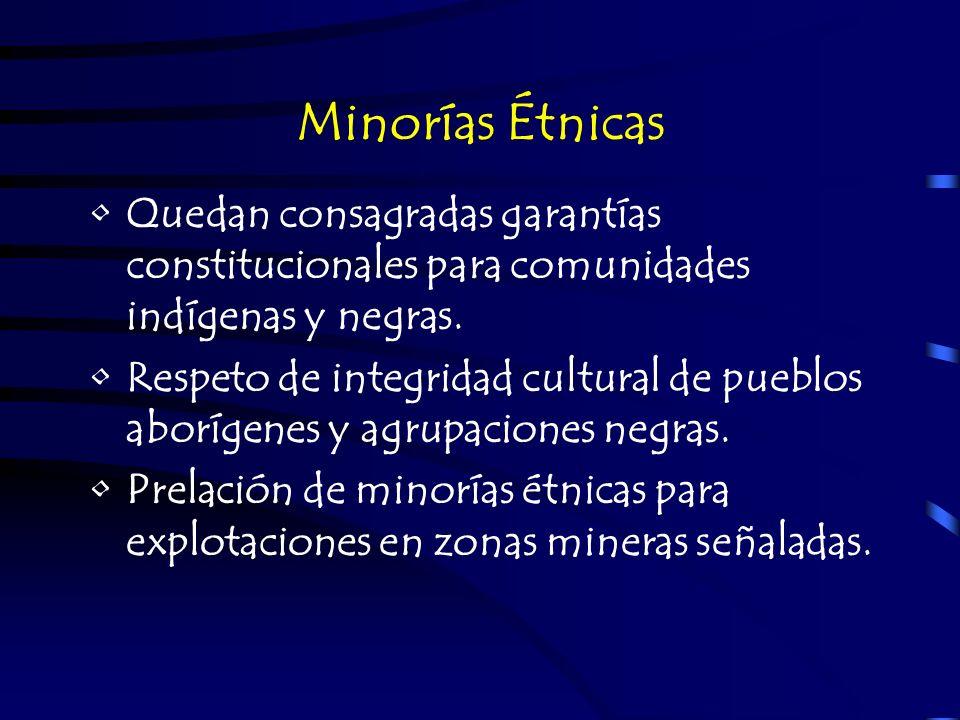 Minorías ÉtnicasQuedan consagradas garantías constitucionales para comunidades indígenas y negras.