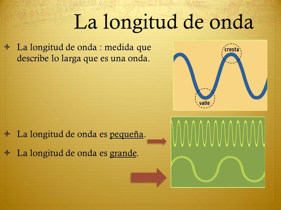 La longitud de onda La longitud de onda : medida que describe lo larga que es una onda. La longitud de onda es pequeña.