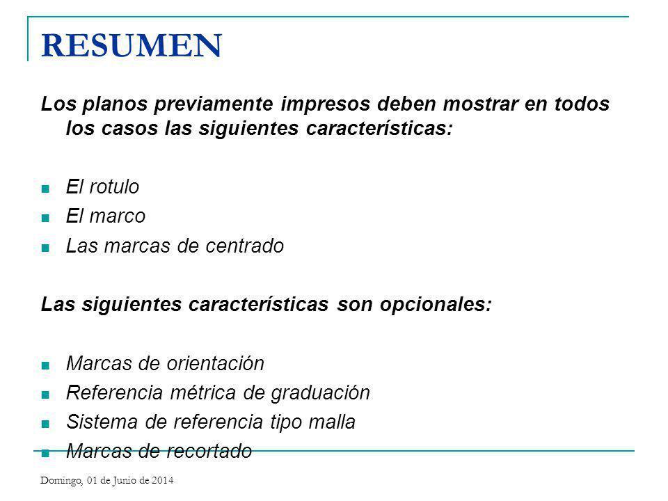 RESUMEN Los planos previamente impresos deben mostrar en todos los casos las siguientes características: