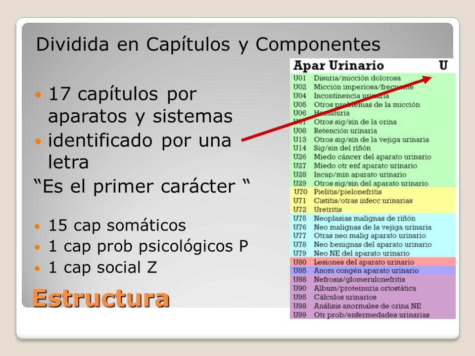 Estructura Dividida en Capítulos y Componentes