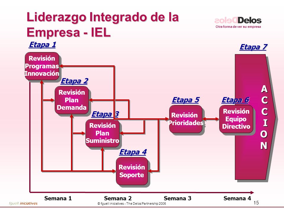 Liderazgo Integrado de la Empresa - IEL