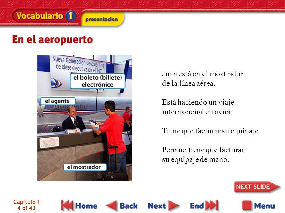 Juan está en el mostrador de la línea aérea.