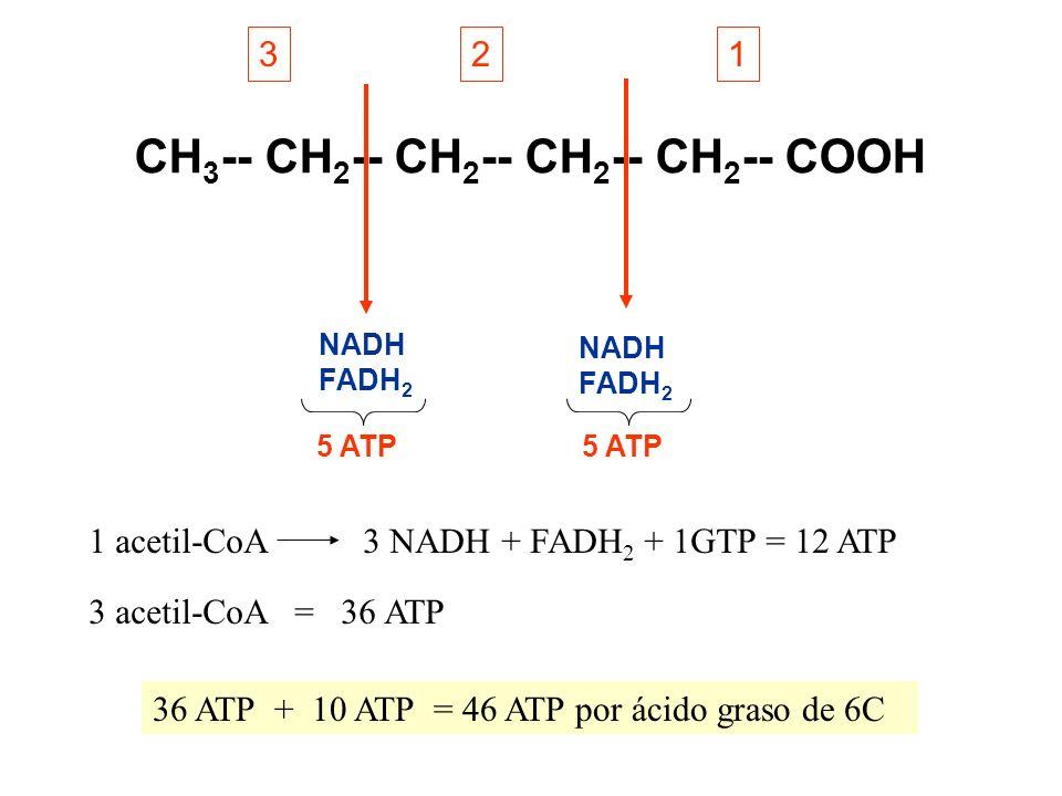 CH3-- CH2-- CH2-- CH2-- CH2-- COOH