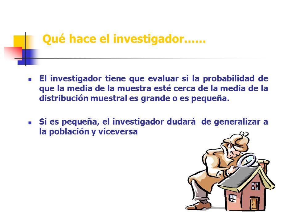 Qué hace el investigador......