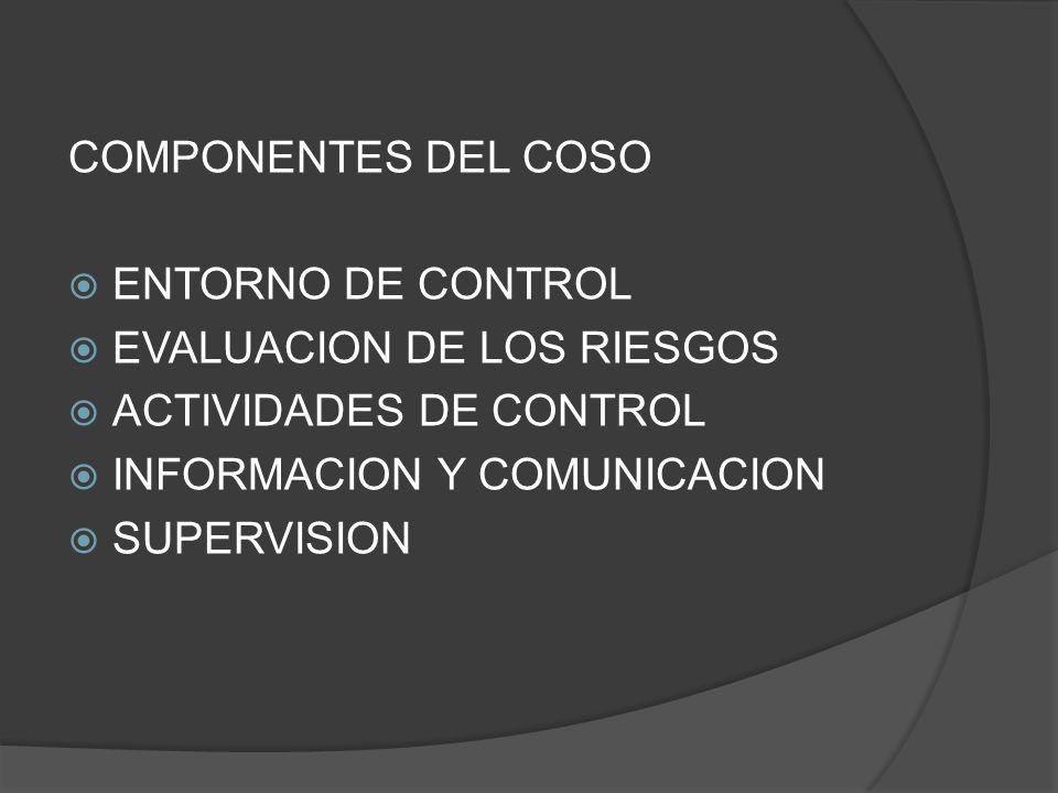 COMPONENTES DEL COSO ENTORNO DE CONTROL. EVALUACION DE LOS RIESGOS. ACTIVIDADES DE CONTROL. INFORMACION Y COMUNICACION.