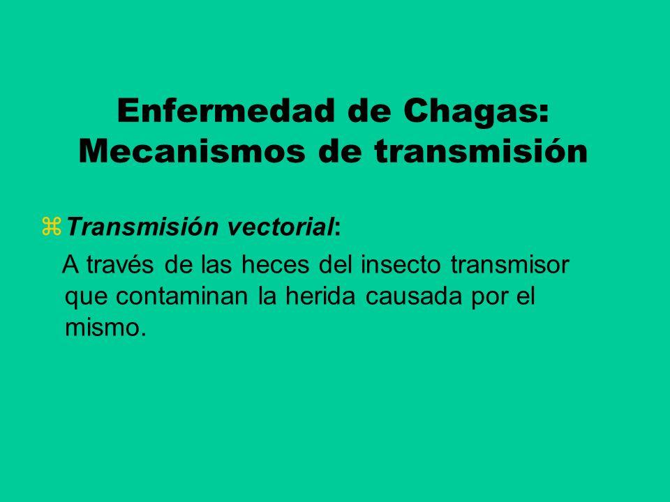 Enfermedad de Chagas: Mecanismos de transmisión