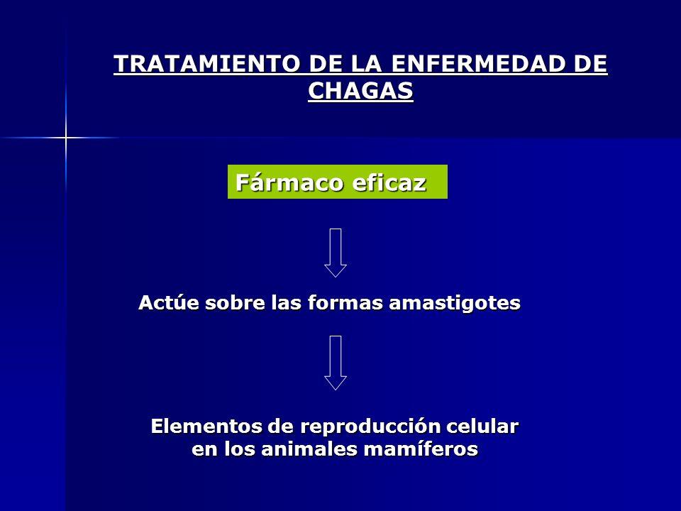 TRATAMIENTO DE LA ENFERMEDAD DE CHAGAS