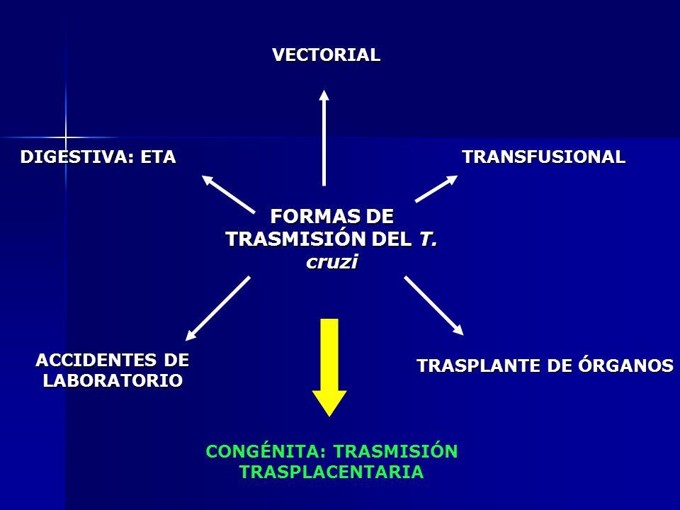 FORMAS DE TRASMISIÓN DEL T. cruzi