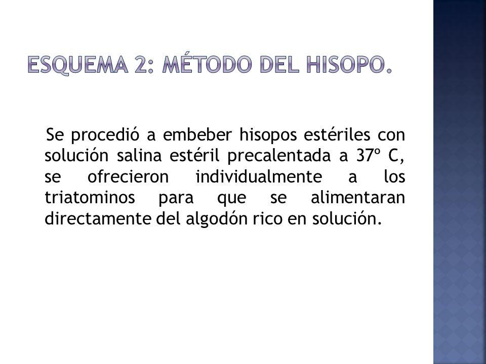 Esquema 2: Método del Hisopo.