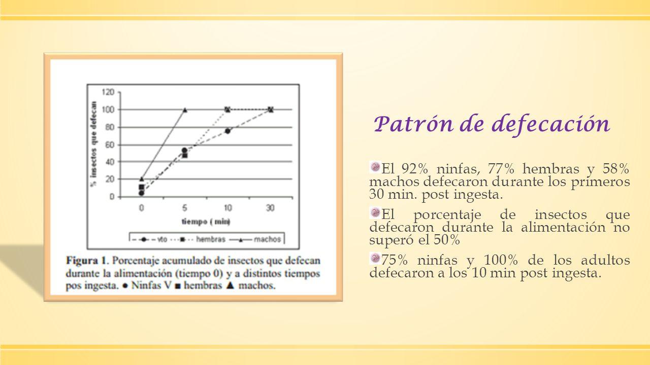 Patrón de defecaciónEl 92% ninfas, 77% hembras y 58% machos defecaron durante los primeros 30 min. post ingesta.