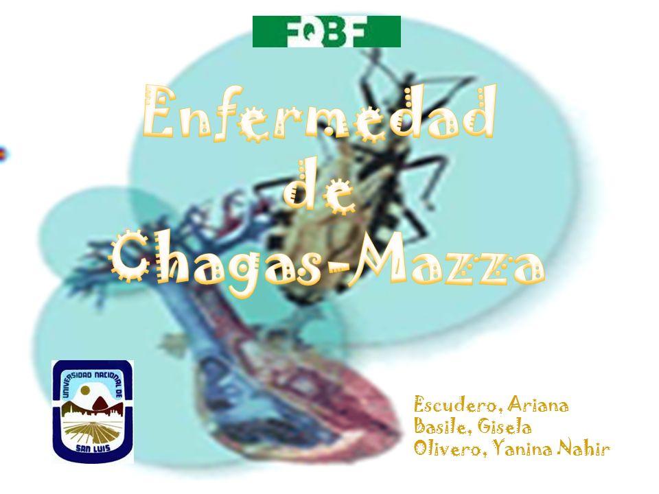 Enfermedad de Chagas-Mazza