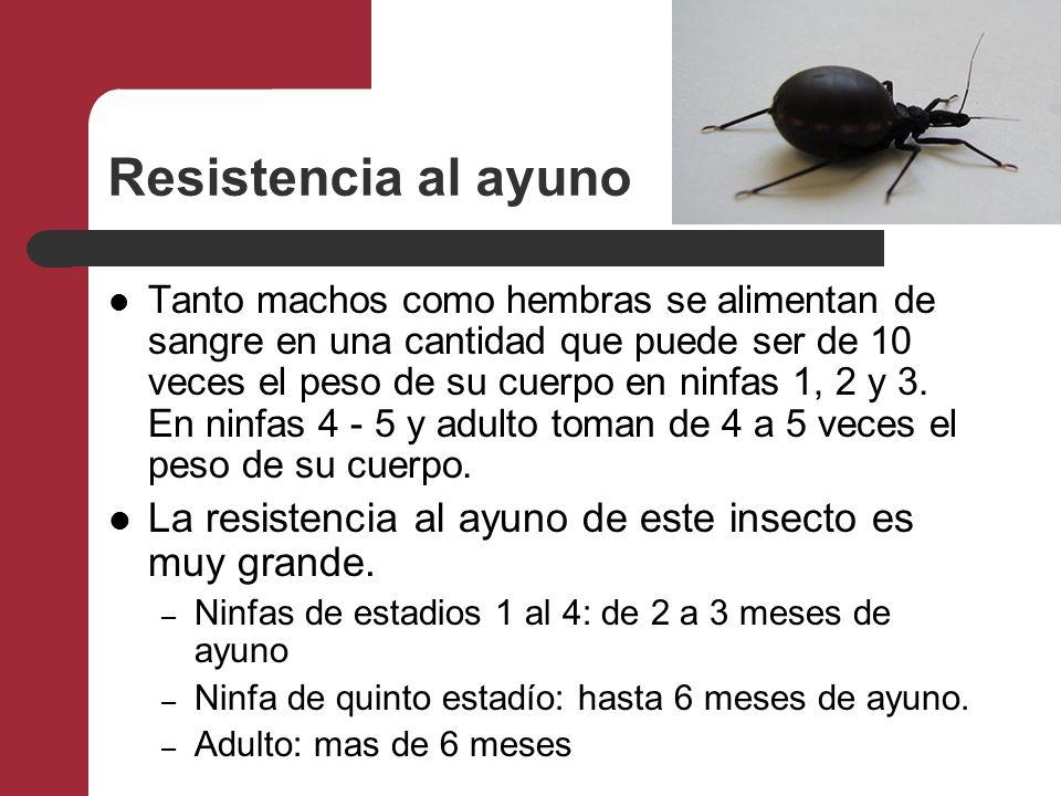 Resistencia al ayuno