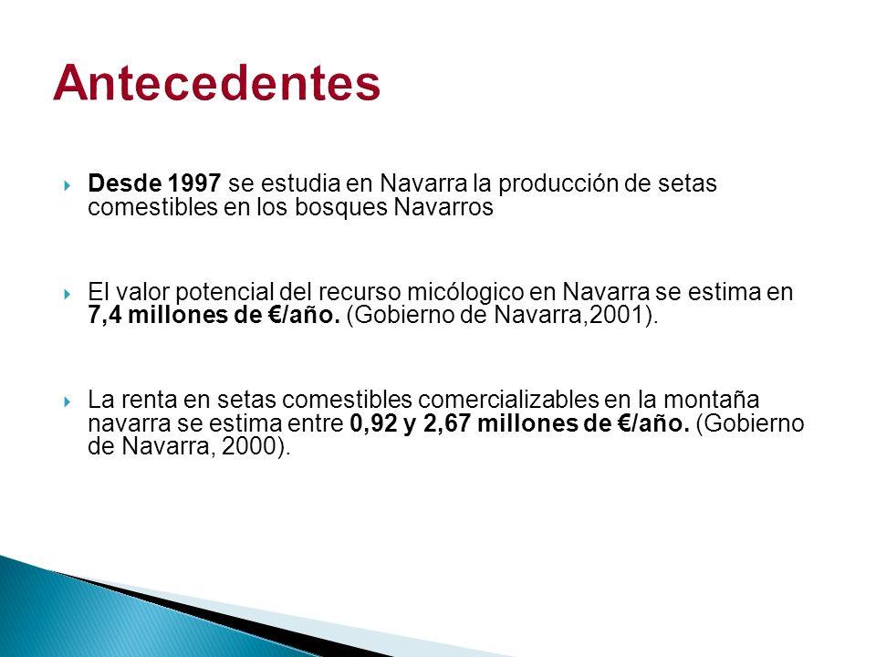 Antecedentes Desde 1997 se estudia en Navarra la producción de setas comestibles en los bosques Navarros.