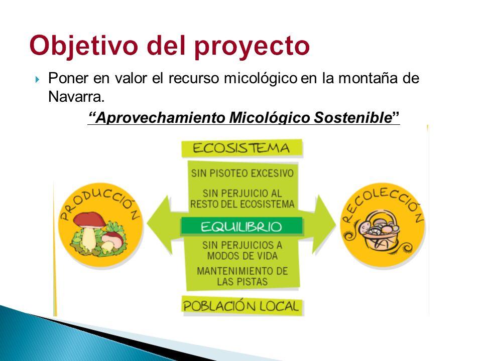 Aprovechamiento Micológico Sostenible
