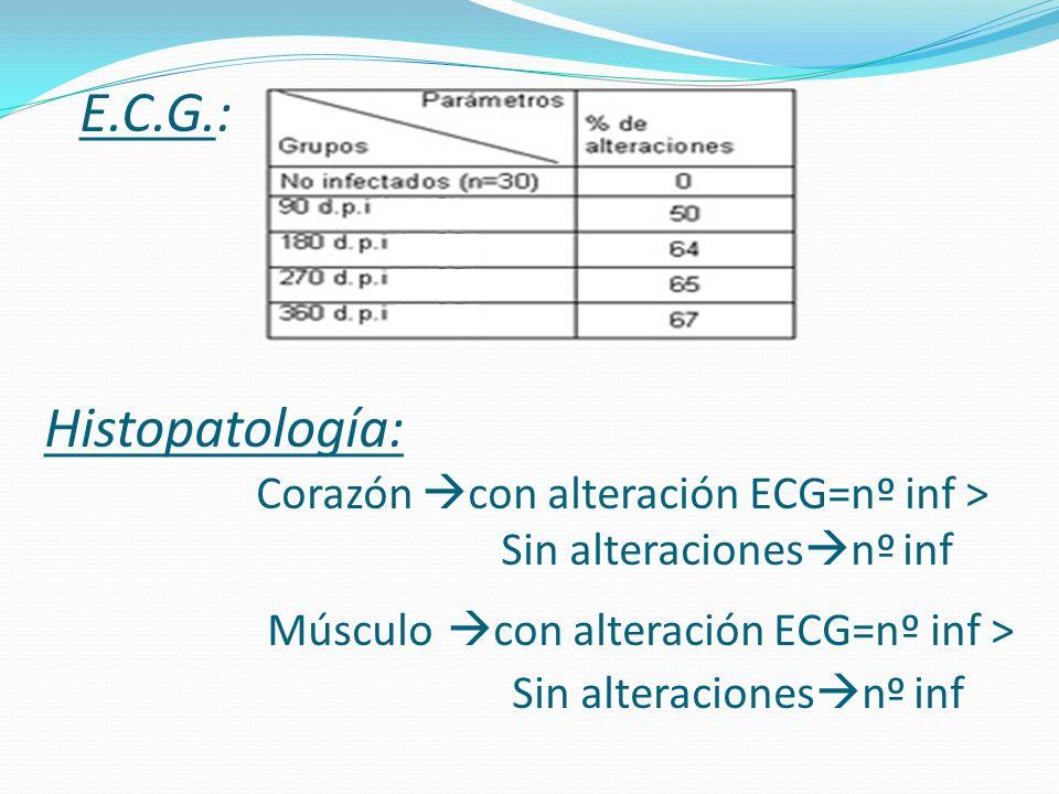 E.C.G.: Histopatología: Corazón con alteración ECG=nº inf > Sin alteracionesnº inf Músculo con alteración ECG=nº inf > Sin alteracionesnº inf