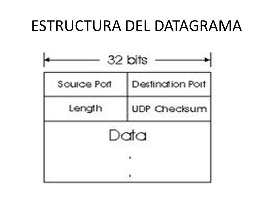 ESTRUCTURA DEL DATAGRAMA